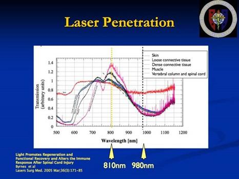 penetration of laser light through tissue